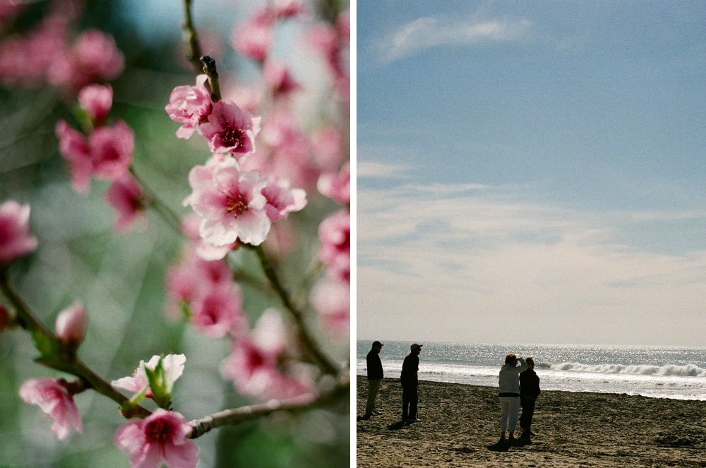 Luke-VanVoorhis-WitnessThis-California-Winter-In-Color-Diptych-02